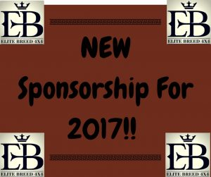 Sponsorship 2017 advert